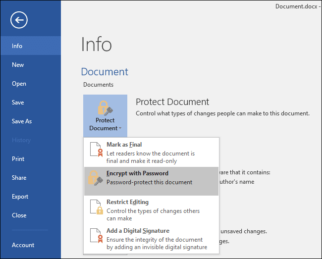 Protect Microsoft Office Files - 2