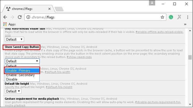 enable_offline_flag