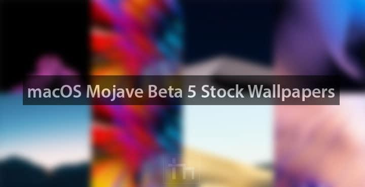Mojave Beta 5 wallpapers