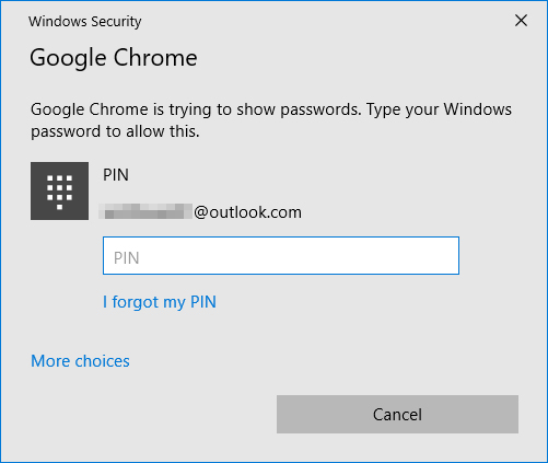 enter computer pin to show password